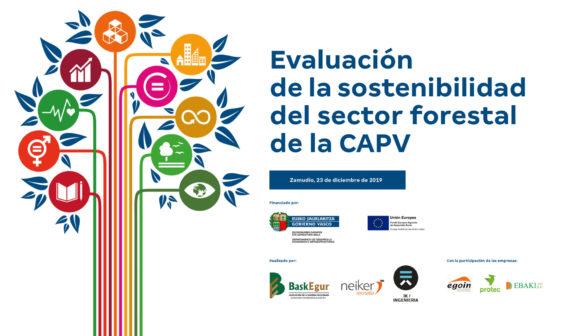 Trabajo para evaluar la sostenibilidad del sector forestal de la CAPV