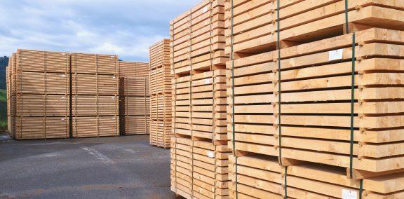 El sector forestal-madera de Euskadi encara el futuro con optimismo en un contexto de precios alcistas de la materia prima y apuesta por la innovación para ganar competitividad