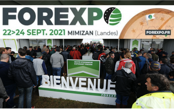 FOREXPO contará con un stand de Baskegur para poner en valor el sector forestal-madera vasco en el sur de Europa
